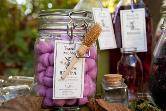 Bocal bonbons fraise tagada violette Halloween 123 Merveilles