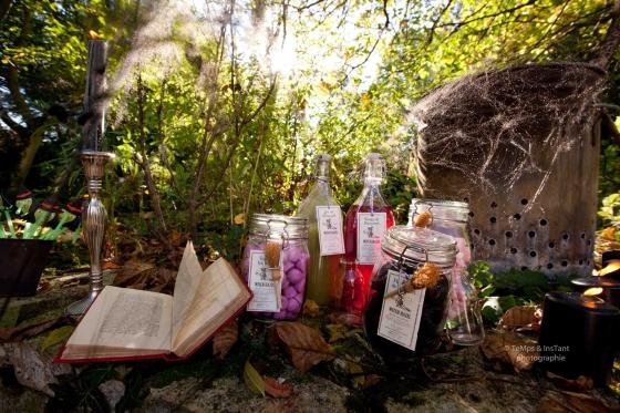 Décor sorcière spécial halloween 123 Merveilles
